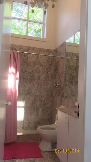 Separate Marble Bathroom with shower