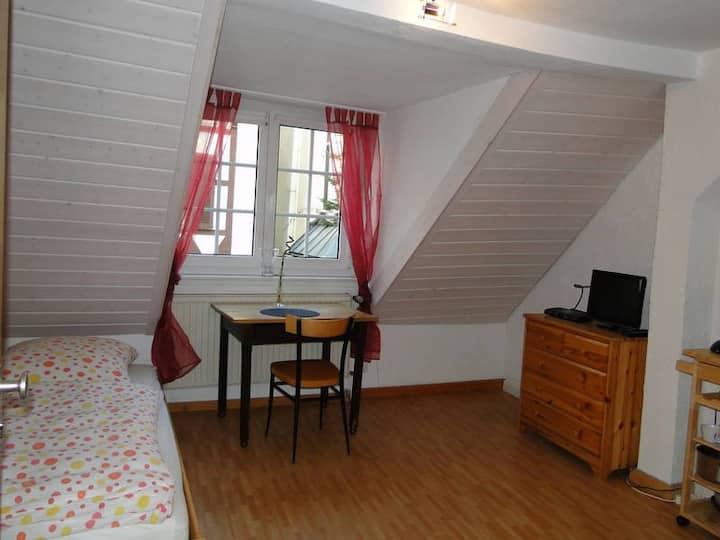 Single-Wohnung im Zentrum Freiburgs
