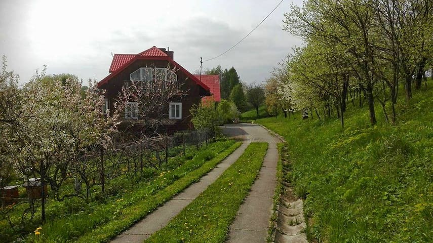 Forest House - Kombornia