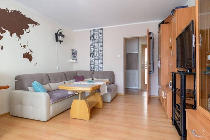 A big, bright, spacious room . - Poznań - Apartemen