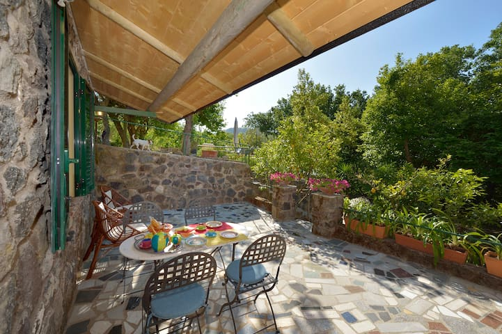 Villa Vincenzo Di Meglio - Apt.3 - Free WiFi