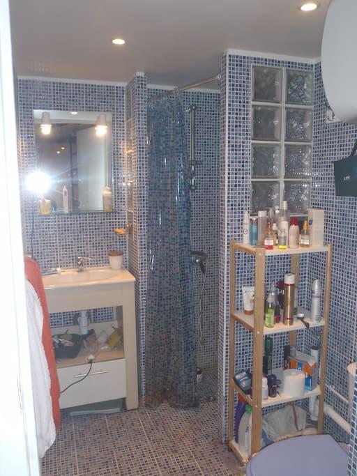 Salle d'eau avec douche à l'italienne, WC