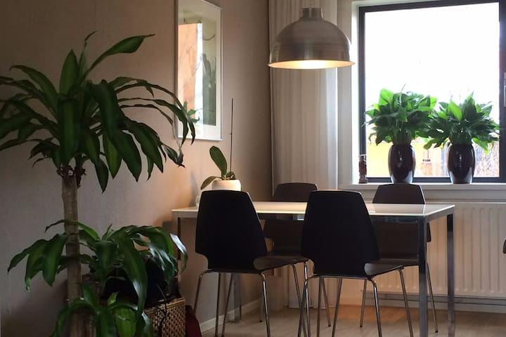 Hele woning + tuin +WiFi + Netflix - Groningen - House
