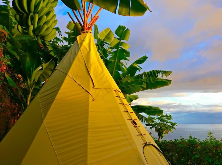 Glamping in a Hidden Paradise  ~ Papaia Tipi