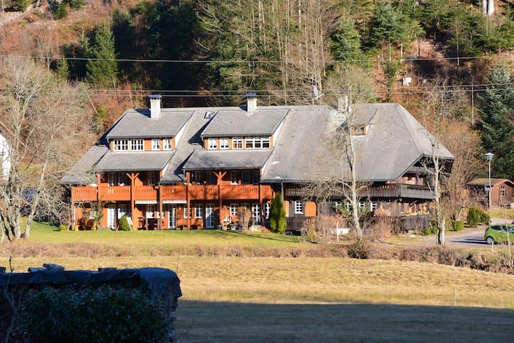 Traumhaft, gemütliche Wohnung im Schwarzwaldhaus - Todtmoos - Pis