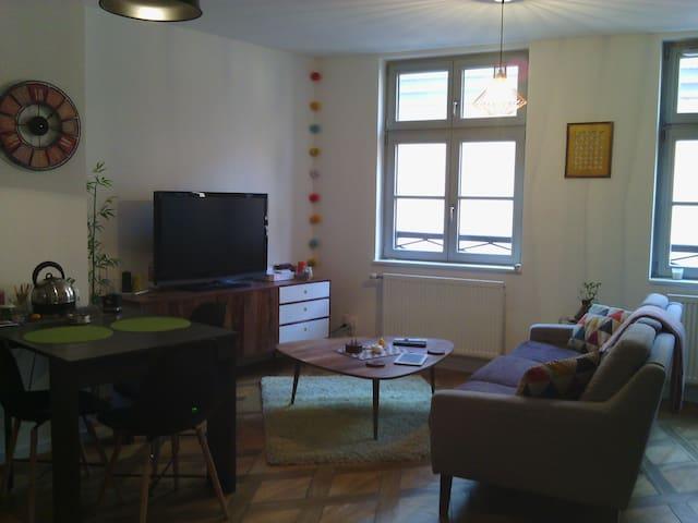 Chambre privée hypercentre - Colmar - Apartament