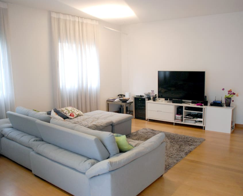Living room with large flat screen and cable TV