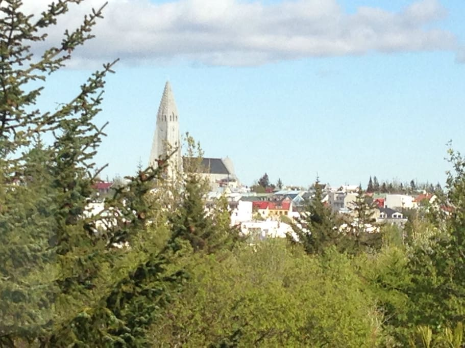 from the living room window you hava a nice view of Hallgrimskirkja Church