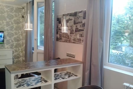 "Quiet ""Through the looking glass"",1-bedroom apart. - Kharkiv - Appartement"