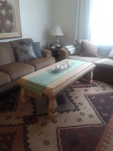 COZY AND PET FRIENDLY ROOM IN PALM HARBOR.