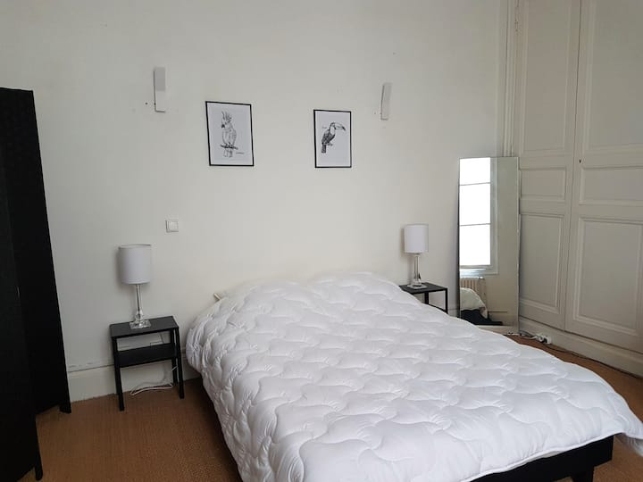 Chambre n°4  avec SDB privée - Hyper Centre Ville