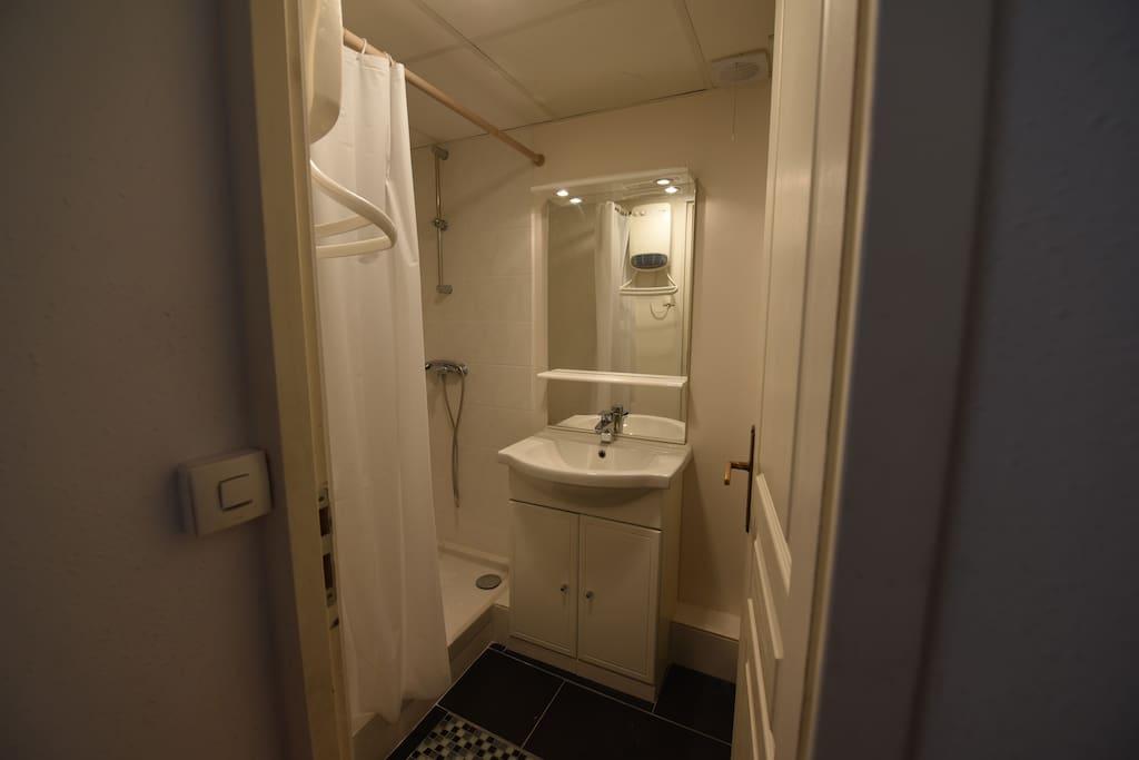 Salle d'eau / Douche / WC / partagée avec les autres guests.