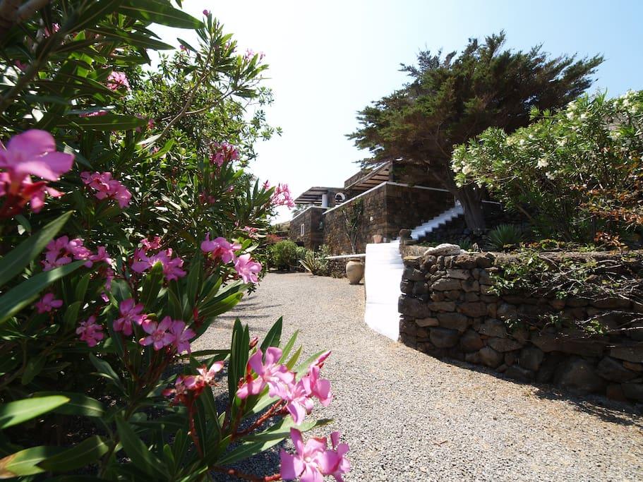 giardino e accesso alla villa