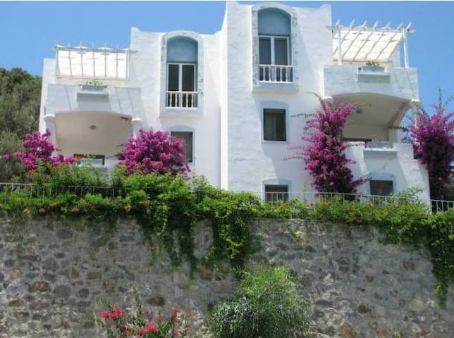 3-17 June Holiday in Bodrum - Bodrum - House