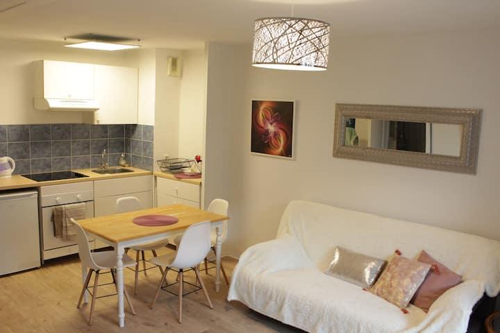 Castres - Appartement cosy et confortable