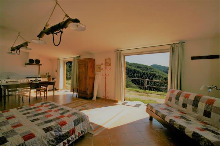 Charming Loggia loft in Chianti - Greve in Chianti - Appartement