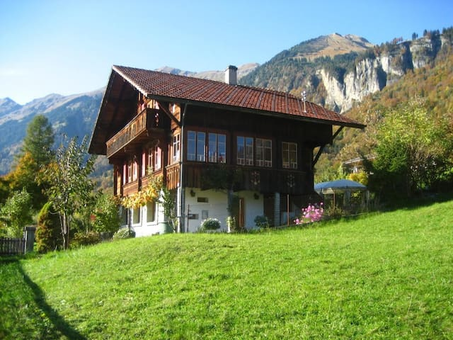 Two-room apartment in a chalet - Brienz - Appartement