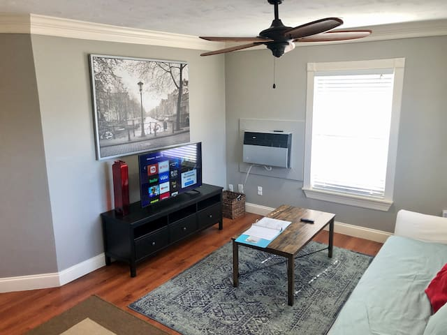 Cozy 1 BR apt in Montrose Historical District