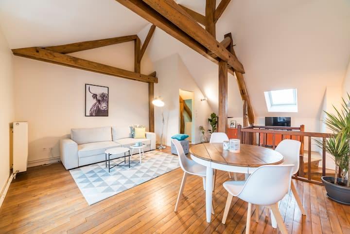 Auxerre : Duplex centre ville