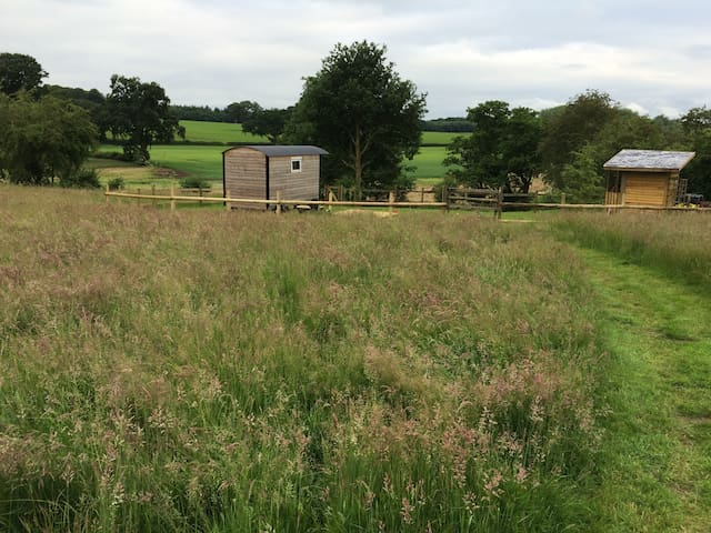 Shepherds Hut in rural Shropshire... - Pickstock - Хижина