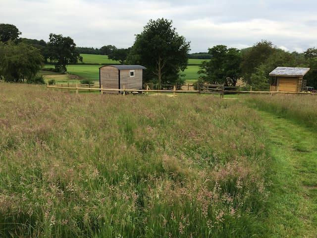 Shepherds Hut in rural Shropshire... - Pickstock - Barraca