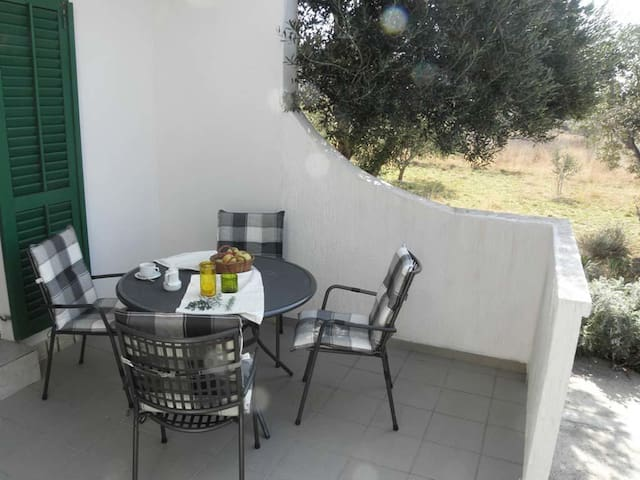 One bedroom apartment with terrace and sea view Barbat, Rab (A-14247-b)