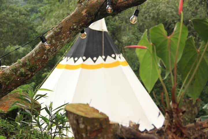 Refugio Del Bosque amarillo