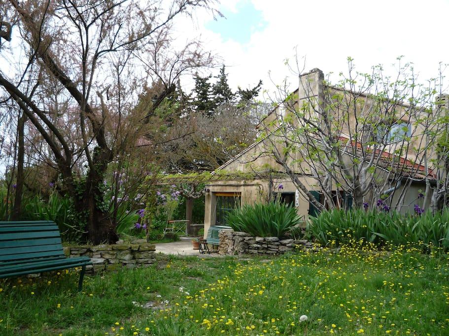 maison de charme avec piscine maisons louer l 39 isle sur la sorgue provence alpes c te d. Black Bedroom Furniture Sets. Home Design Ideas