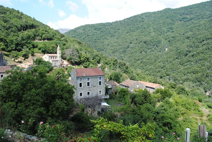 Chambre d'hôte Corse du Sud n°2 - Zoza - Wikt i opierunek
