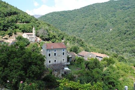 Chambre d'hôte Corse du Sud n°2  - Oda + Kahvaltı