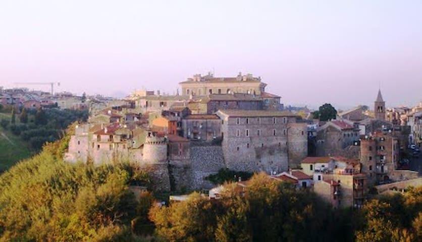 MENTANA ROME CITY 'OF GARIBALDI