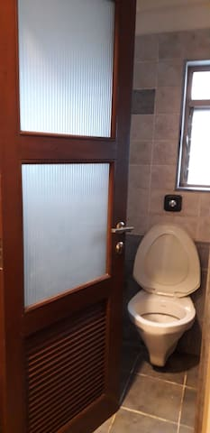 Toilet combined in washroom