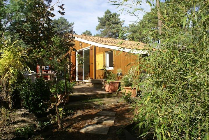 chalet dans la pinède - Carcans - House