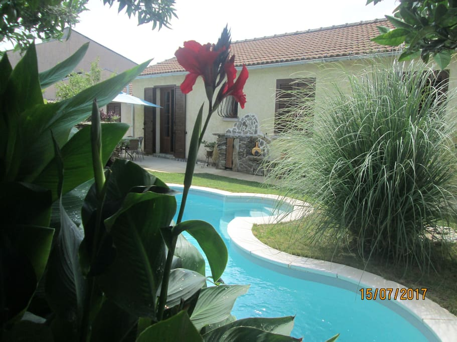 Charmant t2 dans villa avec piscine villas for rent in for Villa avec piscine corse