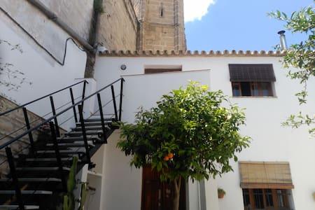 Loft junto iglesia siglo XIV centro - Jerez de la Frontera