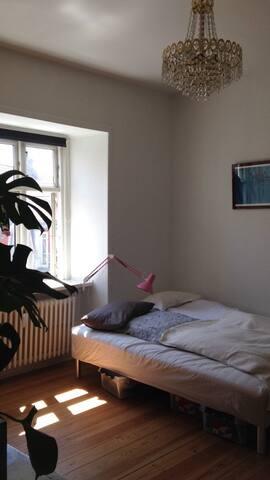 Dejligt værelse i centrum af Aarhus - Aarhus - Pis