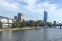 Main river 1
