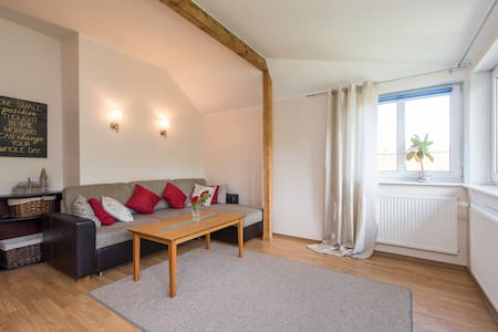 Spacious city-center apartment with sauna - Tallinn - Lägenhet