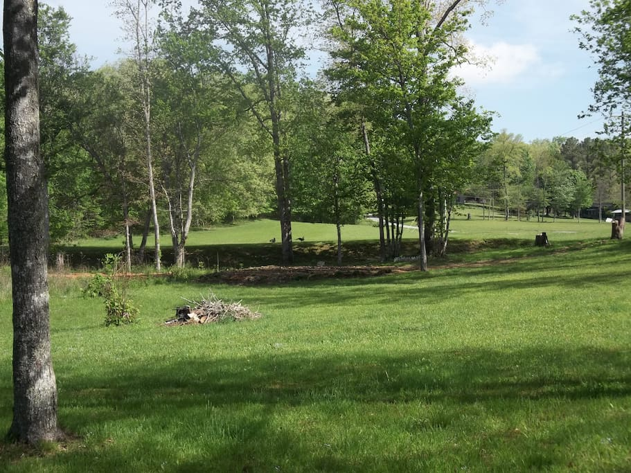 View from front porch.