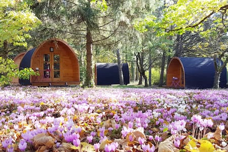 Les cabanes des châteaux - Chouzy-sur-Cisse - 小木屋