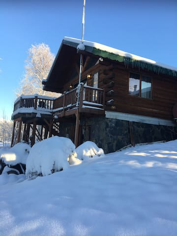Fox Run Lodge Lakefront Aurora Borealis studio