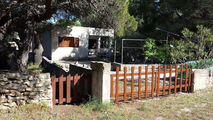 Guesthouse Konti - Šibenik,Žirje - House