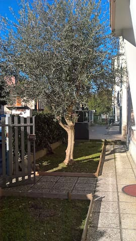 All'Ulivo..... caldo e accogliente - Ravenna - Rumah