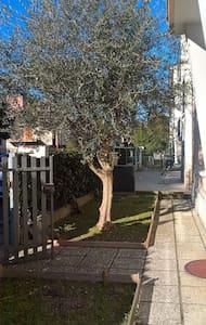 All'Ulivo..... caldo e accogliente - Ravenna