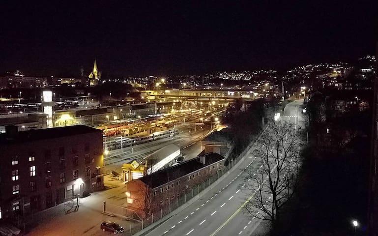 In the heart of Oslo - Oslo - Daire