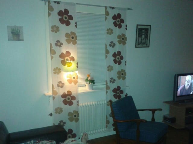 Wonderful room - kristinehamn  - Appartement