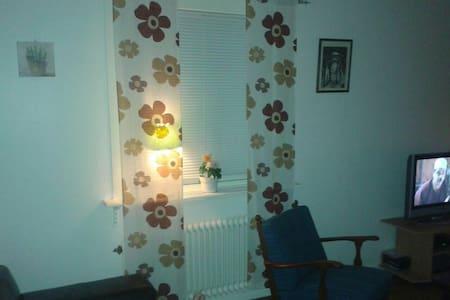 Wonderful room - kristinehamn  - 公寓