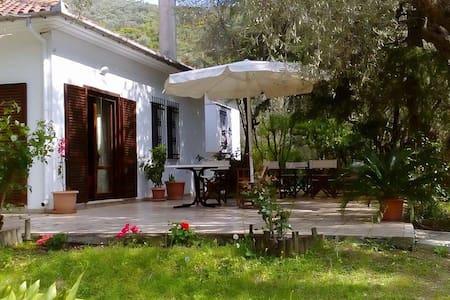 Villa Abovos - Afissos - 別荘