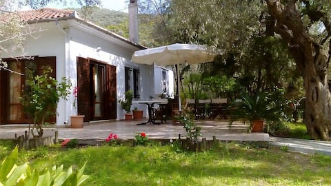 Villa Abovos