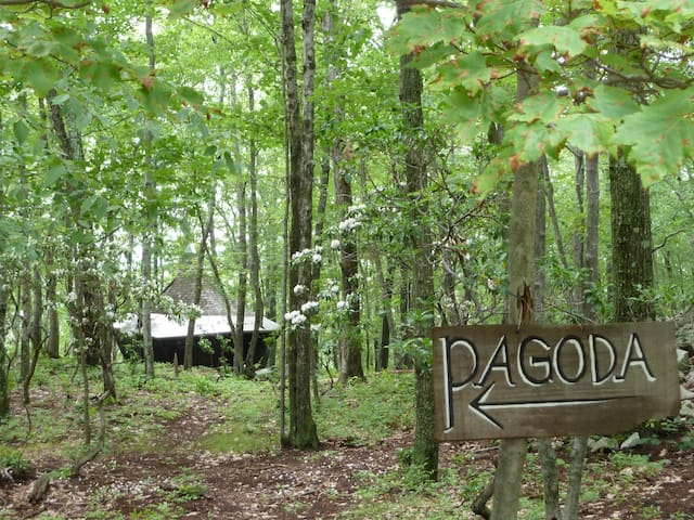 Pagoda Cabin on 60 Acres
